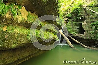 Lush Green Waterfall