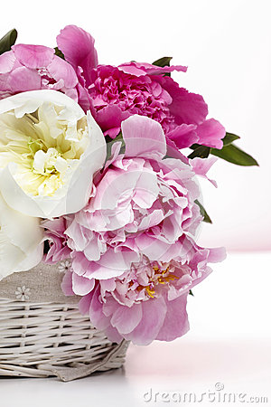 Lush peonies in white basket