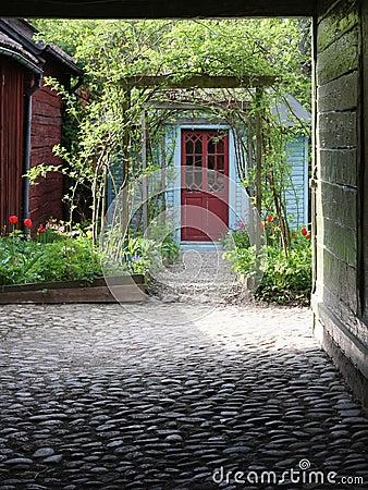 Lush Yard Front