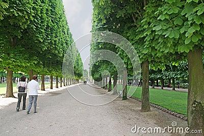Luxembourg Garden Path