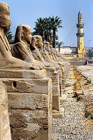 Free Luxor, Egypt. Stock Photography - 4852682