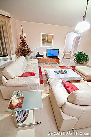 Luxurious modern living room