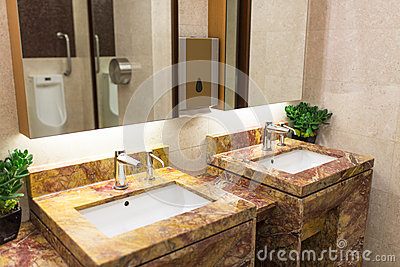 Luxurious Restroom