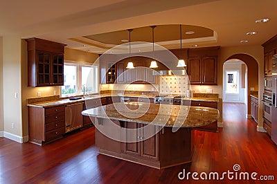 Luxury American House Interior no.4