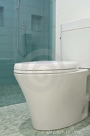 Luxury bathroom designer toilet in modern style