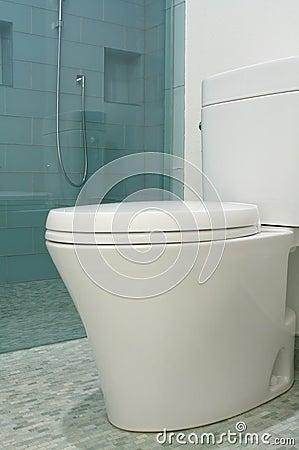 Luxury bathroom designer toilet in modern style