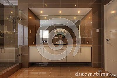 Luxury bathroom in modern home