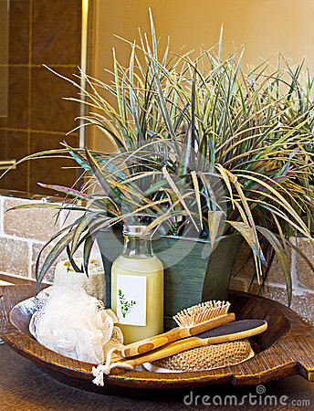 Luxury Bathroom Spa Set With Plant