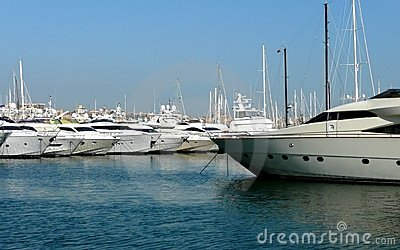 Luxury boats in a Marina