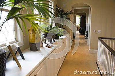 Luxury home hallway