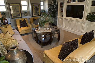 Luxury home living room
