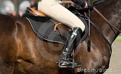 Luxury horseman detail
