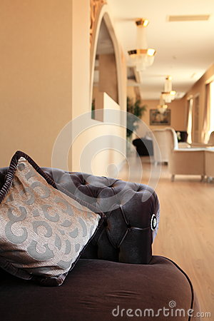 Luxury interior and upholstery