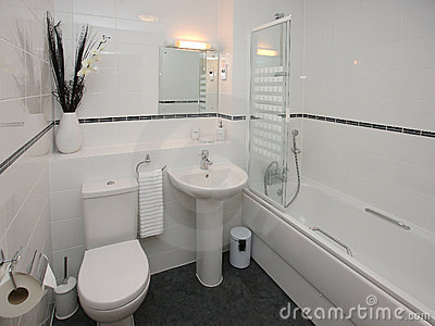 Luxury Modern Bathroom Interior