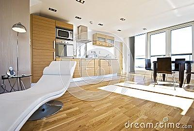 luxury open plan living room
