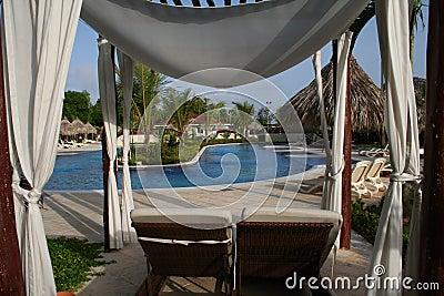 Luxury Resorts Pool Garden