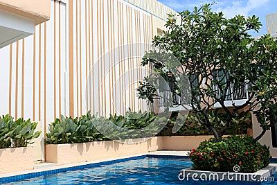 Luxury swimming pool.