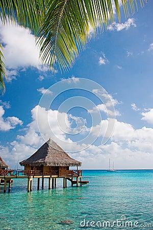 Free Luxury Travel Royalty Free Stock Photo - 10284315