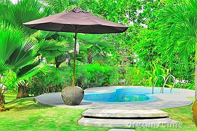 Luxury tropical swimming pool