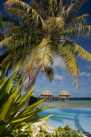 Luxury Vacation - French Polynesia