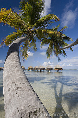 Luxury Vacation - French Polynesia - South Pacific