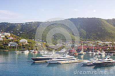 Luxury Yachts in Tropical Harbor