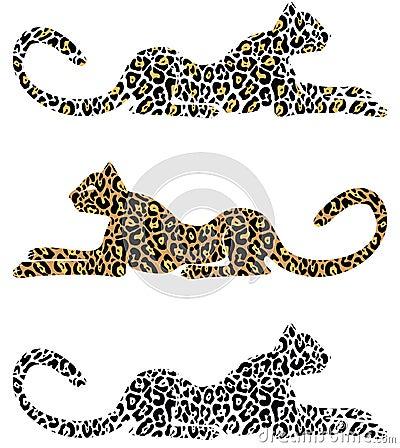 Lying Cheetah
