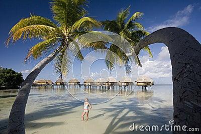 Lyxig semestersemesterort - franska Polynesia