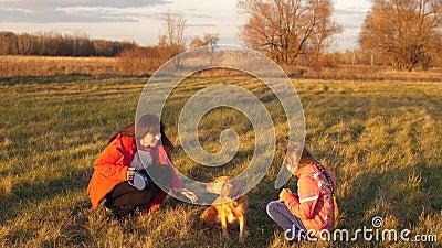 A mãe, a filha e o cão dando uma volta no campo, menina que afaga o cão da mão, família feliz andam com animal de estimação da fa filme