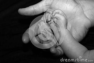 Mãos grandes e pequenas