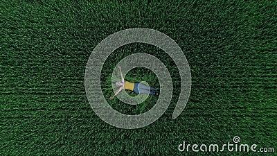 Mädchen, das im Gras, gesehen vom Brummen liegt stock footage