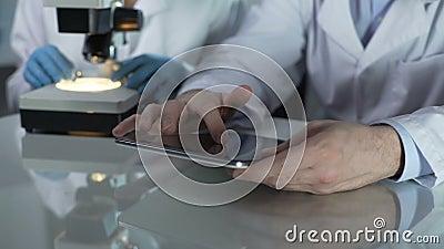 Männlicher Wissenschaftlerblättern-Tablettenschirm, Kollege, der mit dem Mikroskop nahe gelegen arbeitet stock video footage