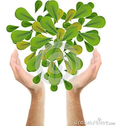 Mänsklig tree