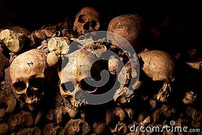 Mänskliga skallar