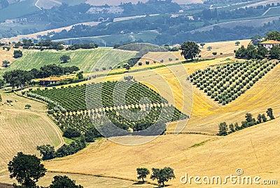 Märze (Italien), Landschaft