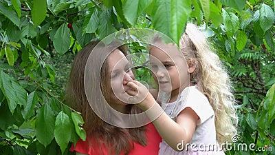 Mère et fille ramassent des cerises des baies dans un jardin de verger Gimbal clips vidéos