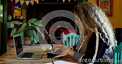 Mûrissez la femme ayant le jus tout en à l'aide de la tablette graphique 4k banque de vidéos