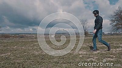 Młodego człowieka odprowadzenie z jego żółtym labradorem przez pole zdjęcie wideo