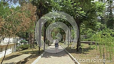 Młodej dziewczyny odprowadzenie wzdłuż palmowej alei Batumi ogród botaniczny, Gruzja zbiory