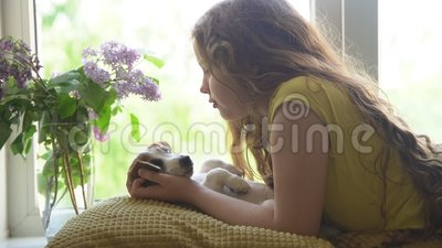 Mały kędzierzawy dziewczyny całowanie z jej szczeniakiem na okno zbiory wideo