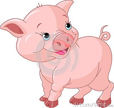 Mała dziecko świnia