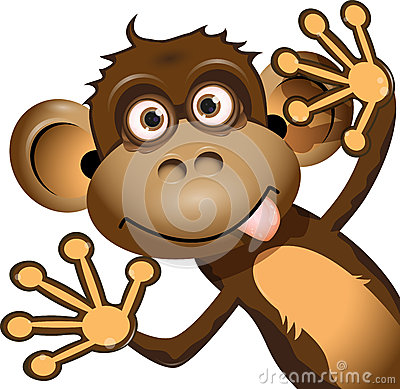 Macaco engraçado