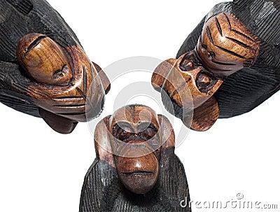 Macacos surdos, cegos e mudos no fundo branco