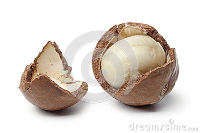 Macadamia nut in a broken shell