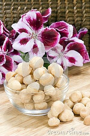 Macadamia Nuts - vertical