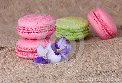 Macaroons in pink and Light Green
