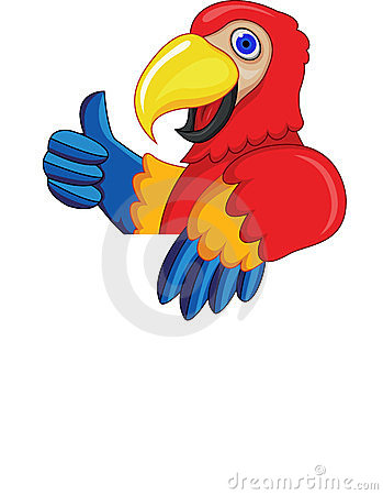 Macaw cartoon with blank sign
