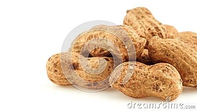 Macro do close up dos amendoins isolados no branco que desliza da direita para a esquerda video estoque