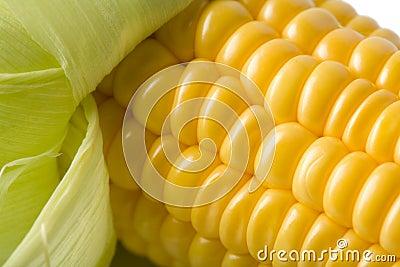 Macro of fresh maize