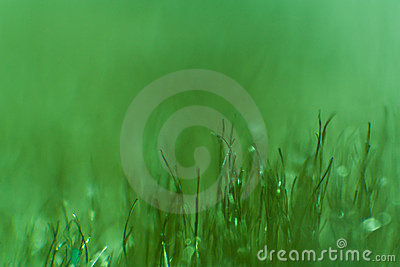 Macro of a green blanket, green grass effect